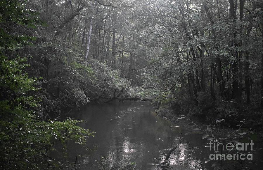 Down A Lazy River Photograph