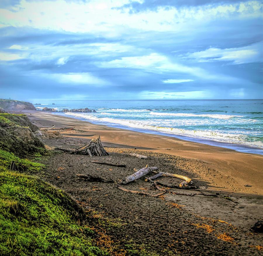 Driftwood Moonstone Beach 2 Photograph