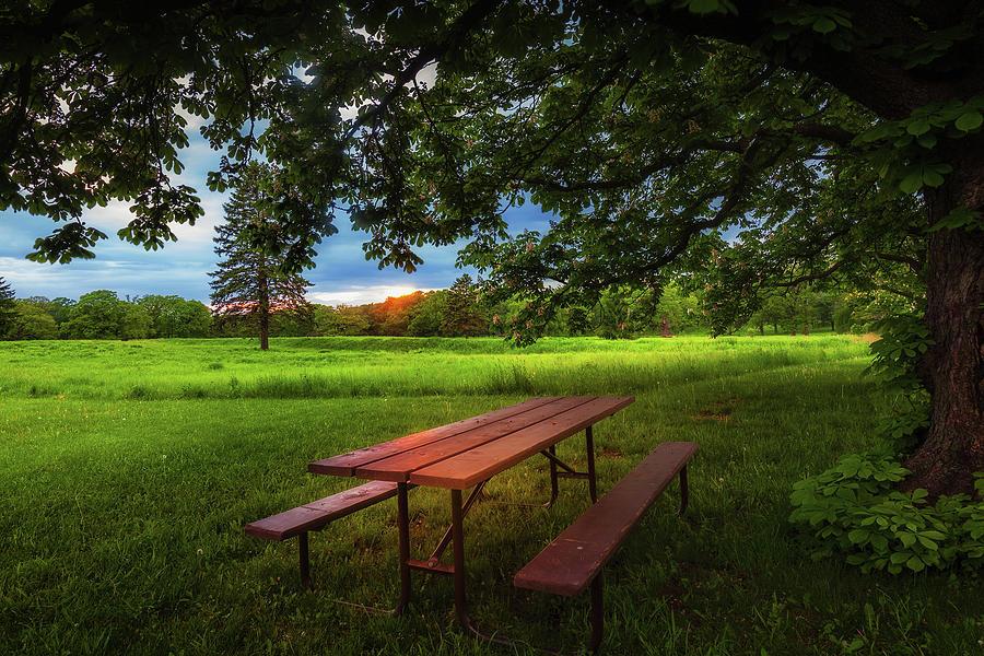 Evening Picnic Photograph