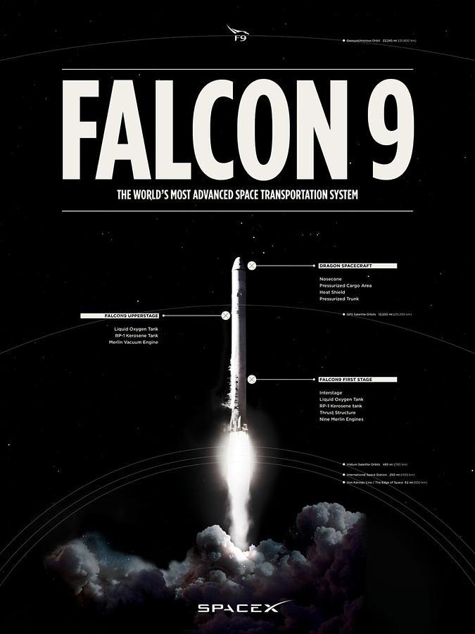 Falcon Digital Art