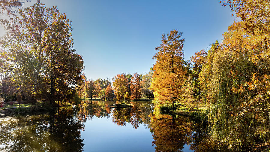 Fall at the Arboretum by Jay Stockhaus
