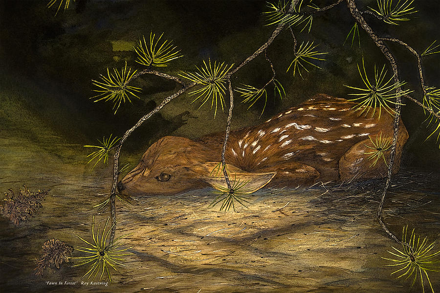 Fawn in Forest by Roy Kastning