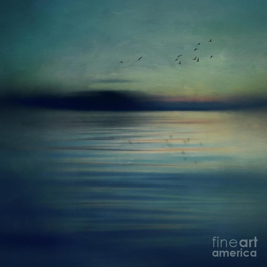Fly away by Priska Wettstein