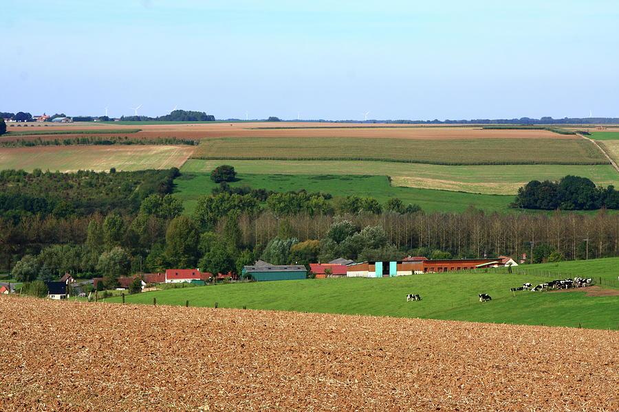 French Countryside by Aidan Moran