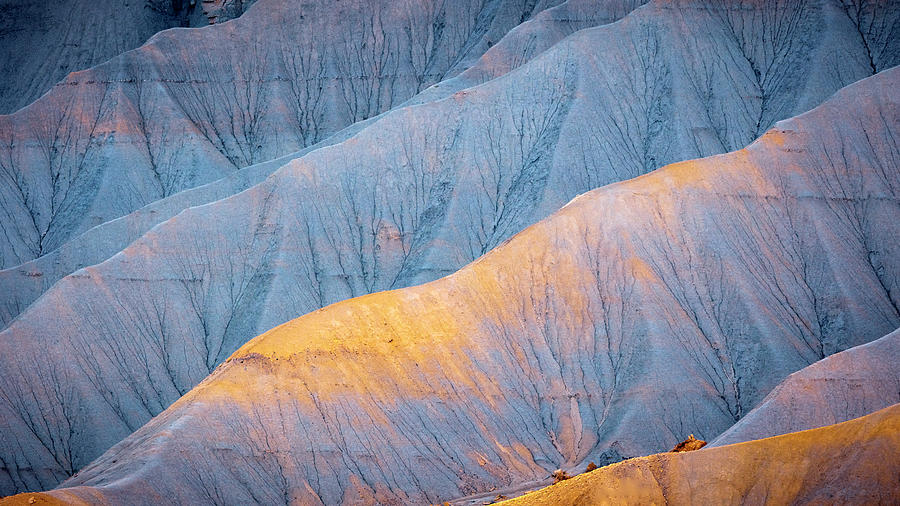 Golden Badlands Photograph