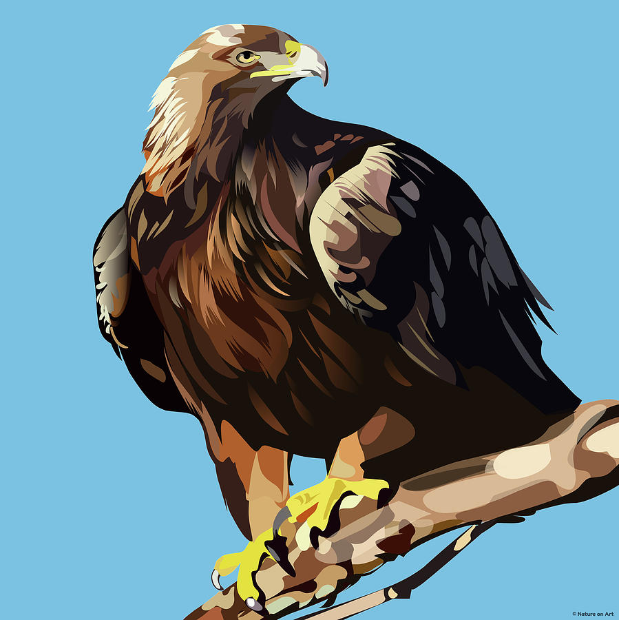 Golden Eagle Mixed Media