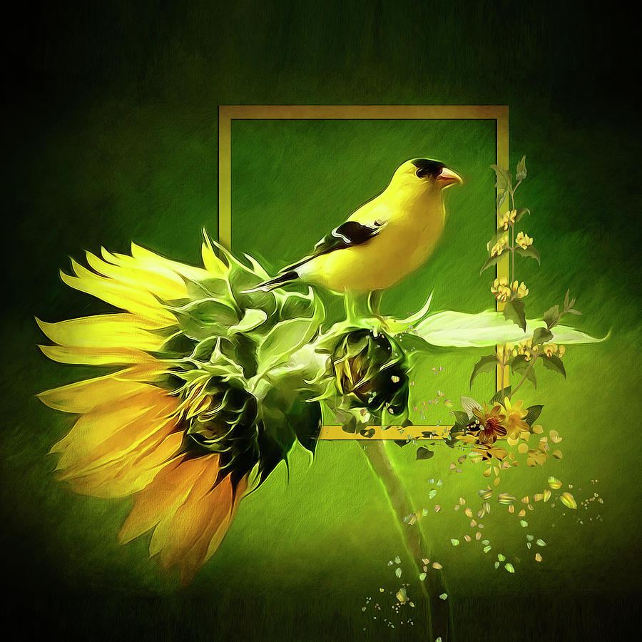 Goldfinch by Maggy Pease