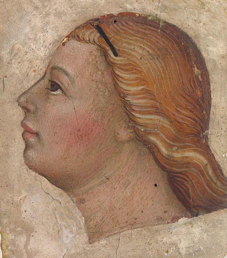 Head of an Angel in Left Profile by Taddeo di Bartolo