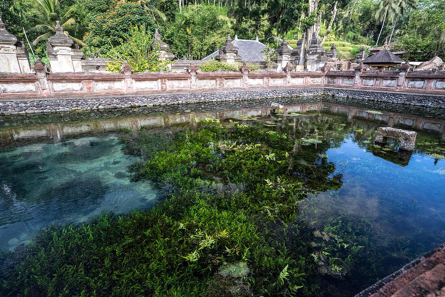 Holy spring water in Bali Photograph by Shaifulzamri
