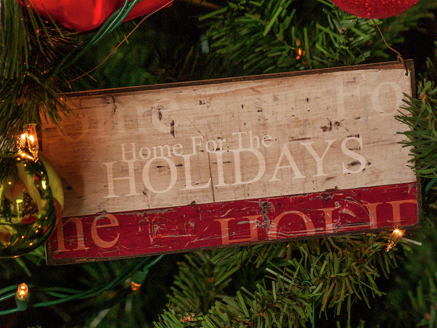 Home for the Holidays by Stewart Helberg