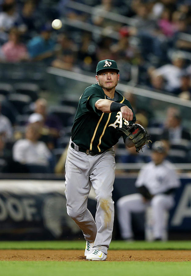 Josh Donaldson Photograph by Elsa
