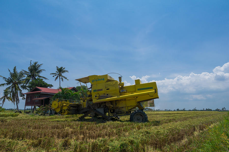 JULY 2017; Farmer uses machine to harvest rice on paddy field in Sabak Bernam. It is one of the major rice supplier in Malaysia. Photograph by Shaifulzamri