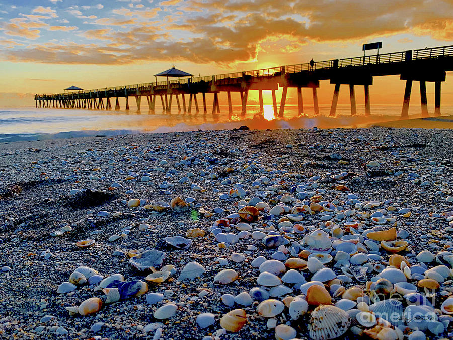 Juno Beach Sunrise Photograph