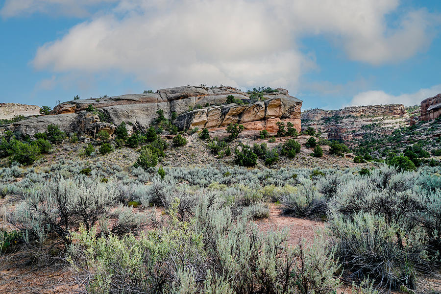 Landscape Photograph - Magnificent Rock Formations by Ric Schafer