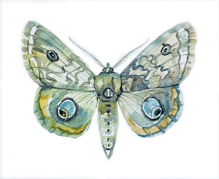 Facemask Painting - Moth by Luisa Millicent