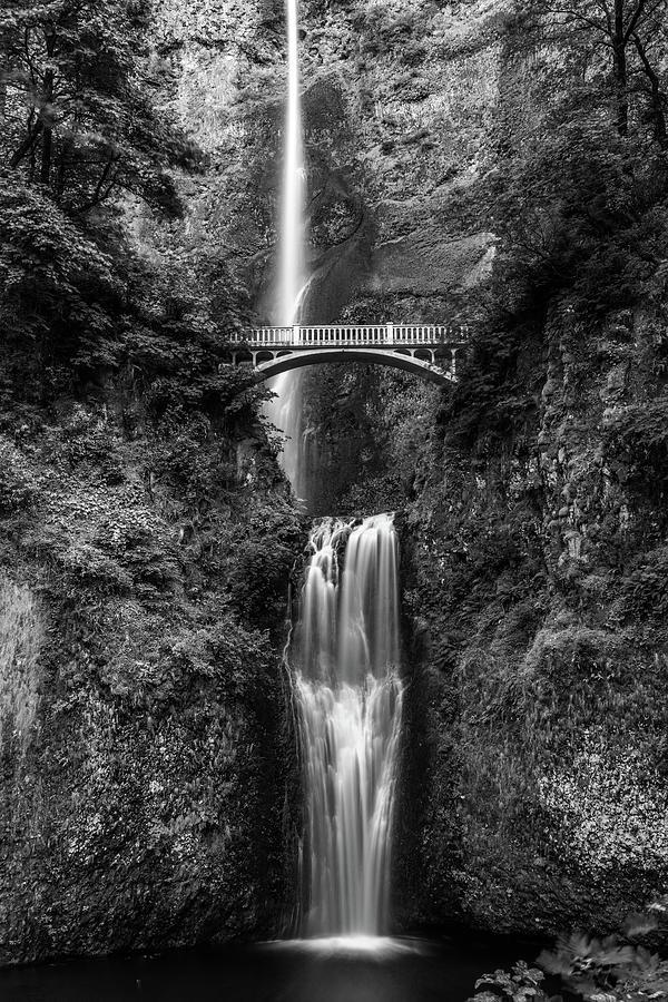 Multnomah Falls In Black And White Photograph