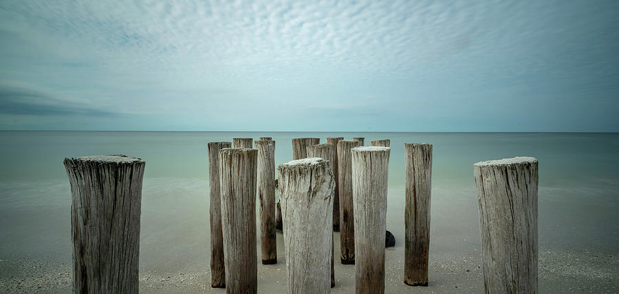 Naples Pilings 2021 Photograph by Joey Waves