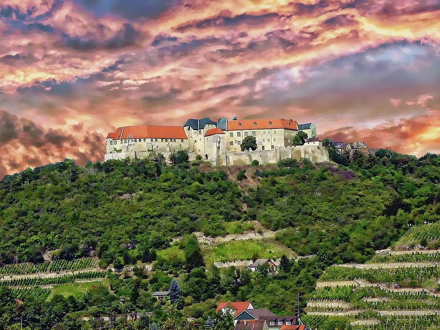 Neuenburg Castle by Anthony Dezenzio