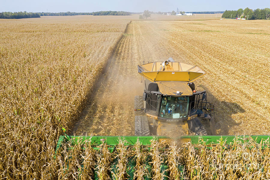 Ohio Corn Harvest Photograph