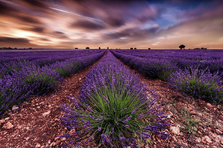 Landscape Photograph - Paradise by Jorge Maia