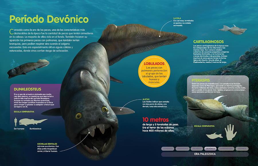 Periodo Devonico by Album