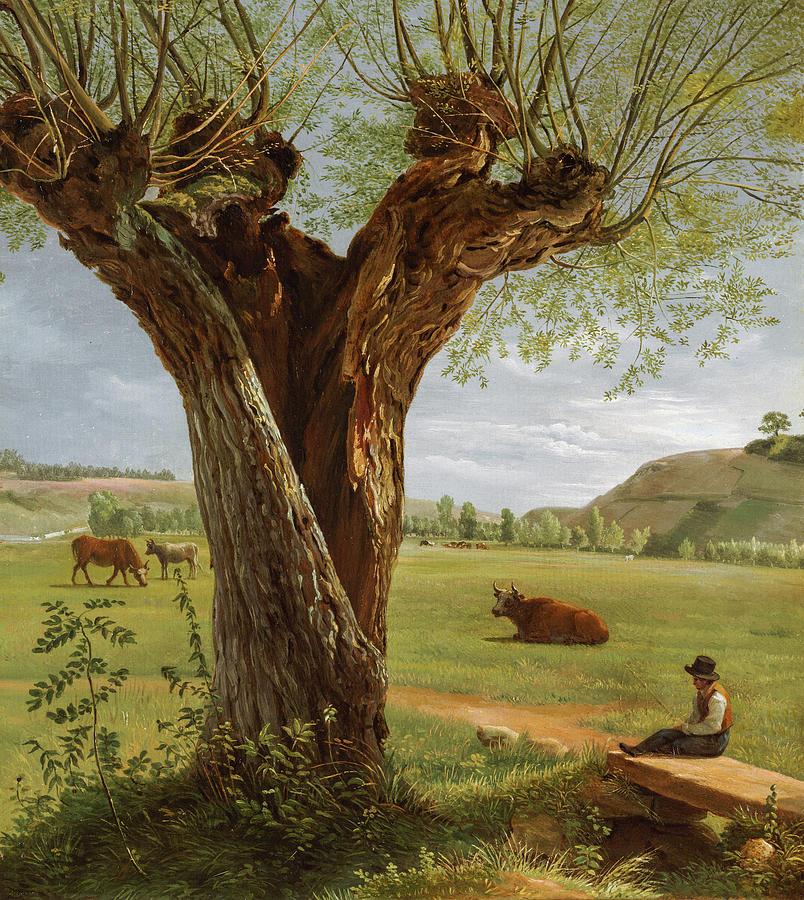 Pollard Willow by Pierre Jean Boquet