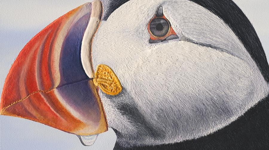 Puffin Painting - Puffin by Russell Hinckley