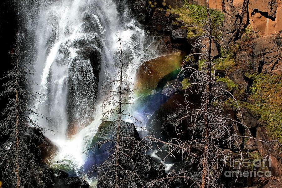 Rainbow in the Mist by Jim Garrison