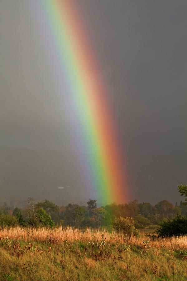 Rainbow Photograph by Trevor Slauenwhite