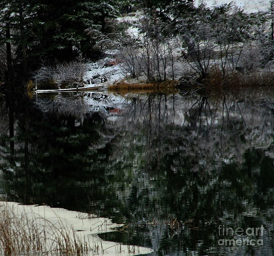 Lakes Photograph - Relections by Roland Stanke