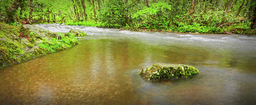 River In The Smokey Mountains II Photograph