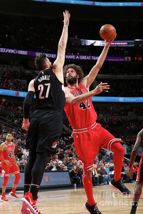 Robin Lopez Photograph by Gary Dineen