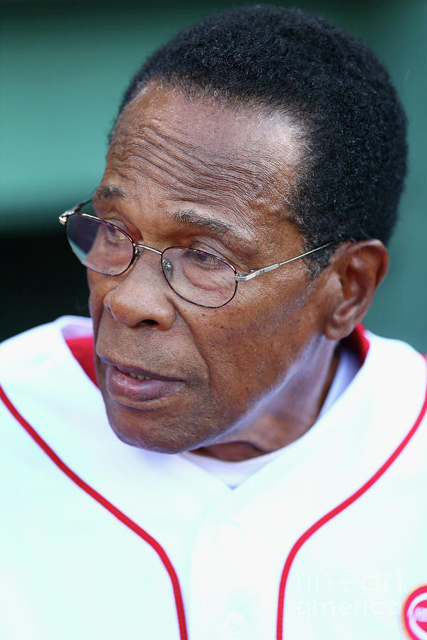 Rod Carew Photograph by Maddie Meyer