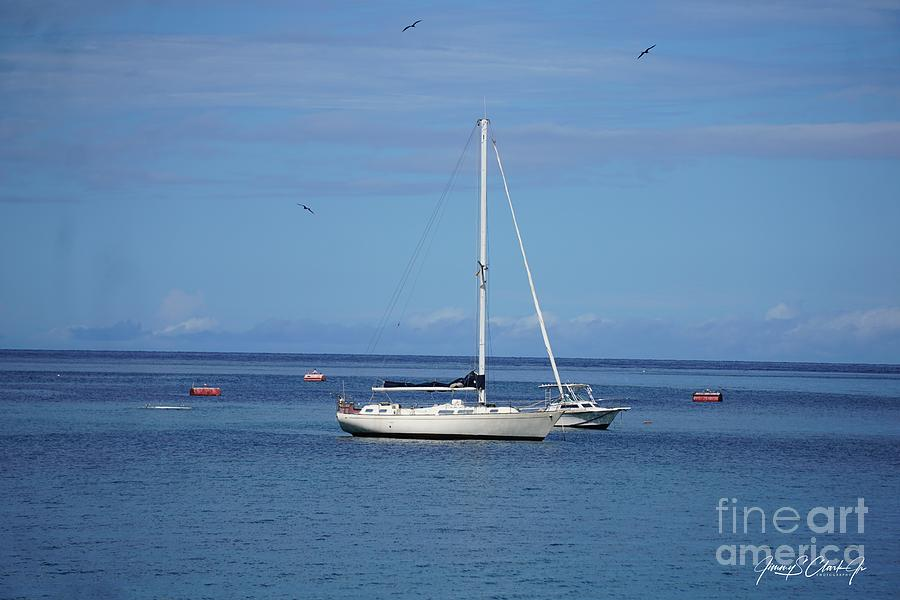 Sailboat  by Jimmy Clark