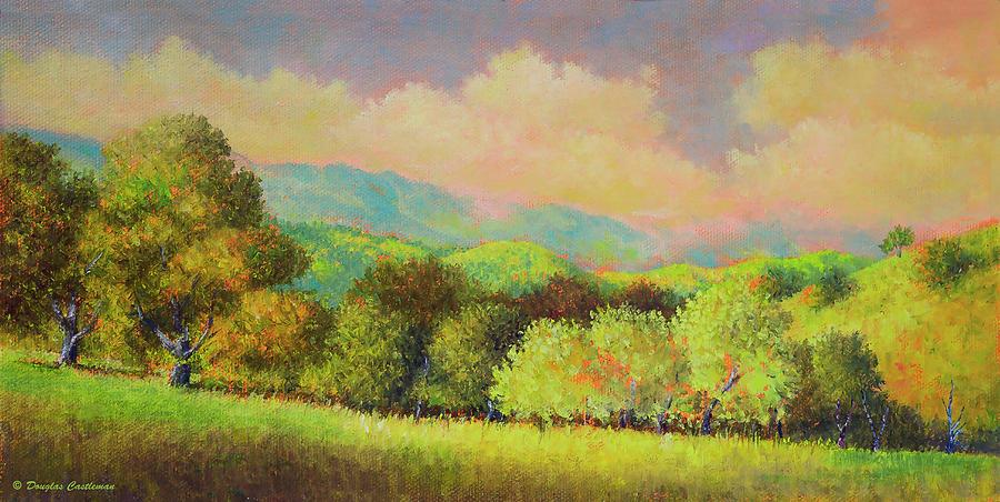 Santa Ynez Hills by Douglas Castleman