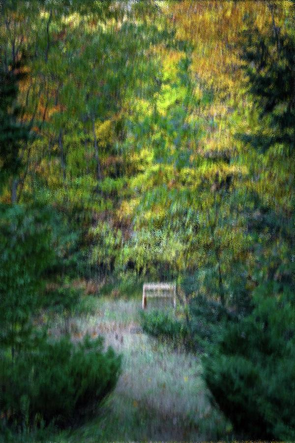 secret bench by David Heilman