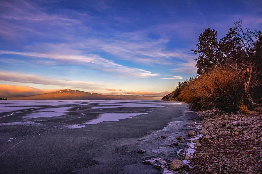 Shore Light by Bill Posner