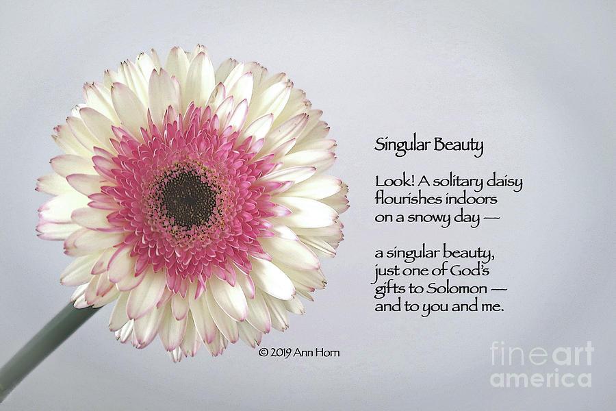 Singular Beauty by Ann Horn