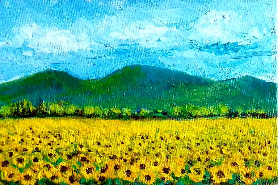 Sunflower fields-end of summer by Asha Sudhaker Shenoy