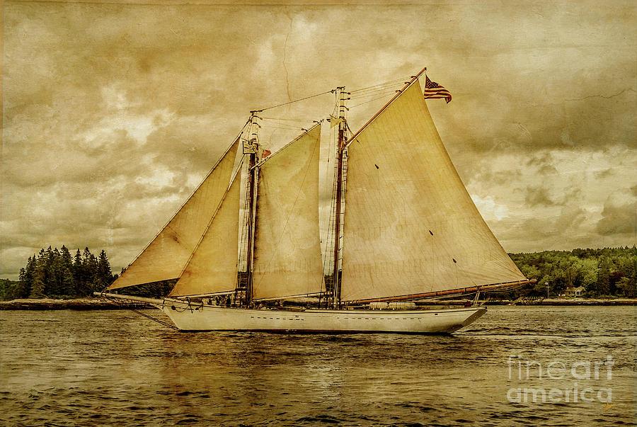 Tall Ship Photograph