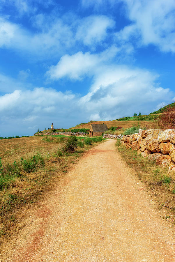 The Camino De Santiago As It Passes Through Navarra Photograph