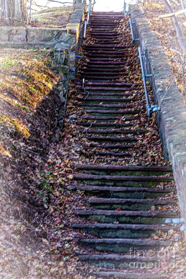 The Climb by William Norton