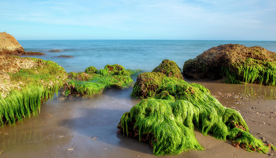 Lonely Photograph - The Coast Of Alcocebre On The Costa Azahar Coast Of Castellon by Vicen Photography