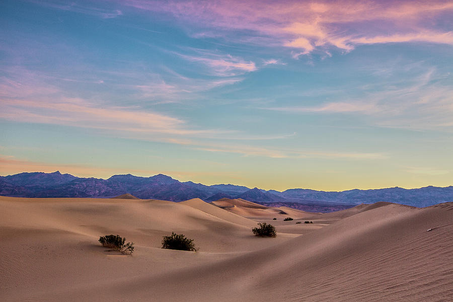 Three in the Sand II by Jon Glaser