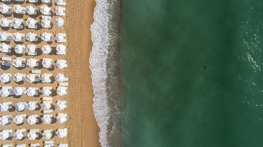 Top Down View Of Beach With White Umbrellas. Golden Sands, Varna, Bulgaria Photograph