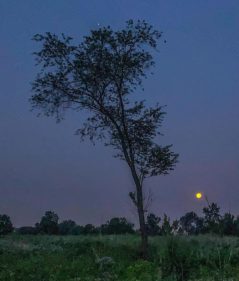 Twilight Photograph - Twilight by Sage Photography