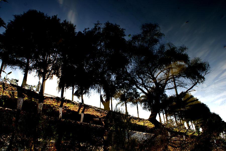 Landscape Photograph - Untitled 1 by Oscar Vago