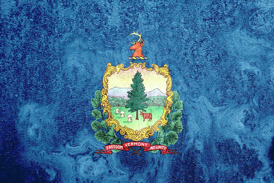 Vermont State Flag Photograph