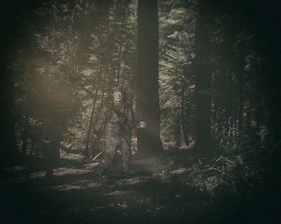 Walking Bigfoot Photograph by RichLegg