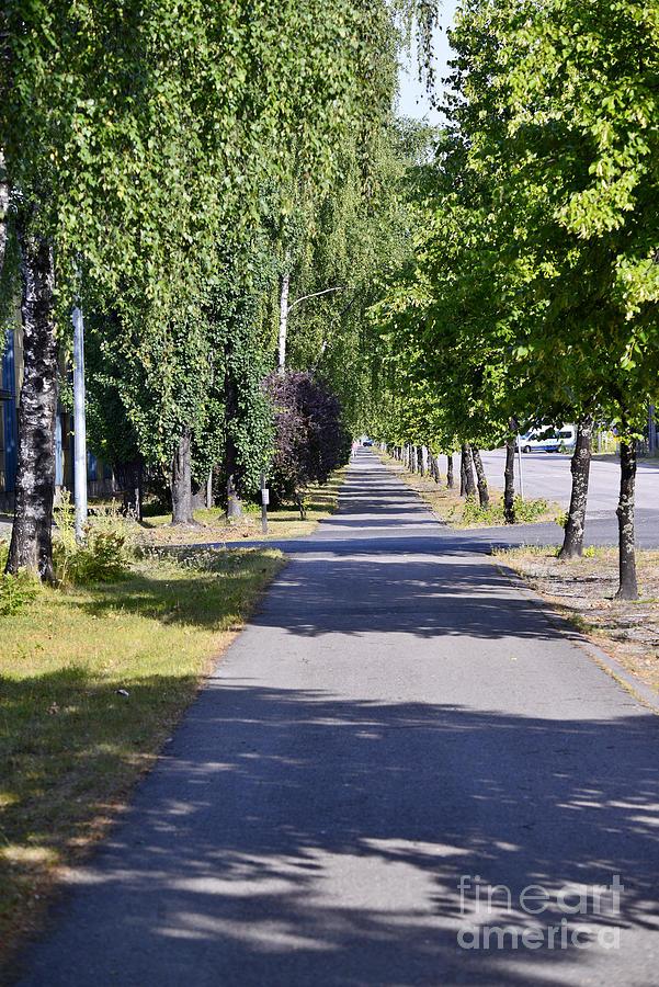 Walkway Photograph